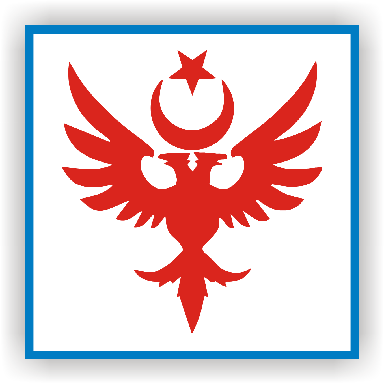 Türk selçuklu