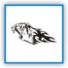Kaplan Tiger