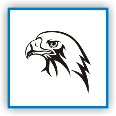 Kartal Eagle Adler