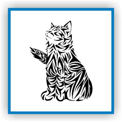 Kedi Katze